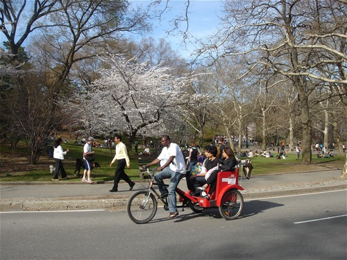 Man on bike pulling passengers in Central Park.