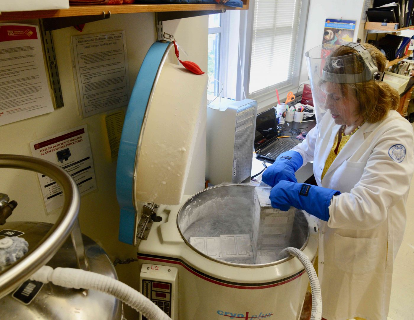 Researcher working in the lab.