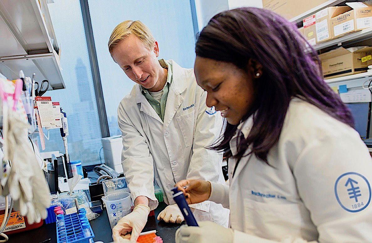 pharmacology weill cornell graduate school
