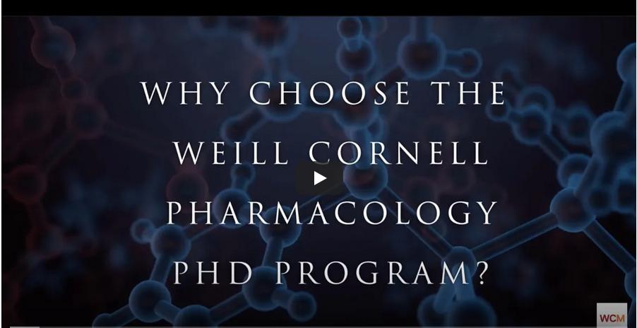 gradschool Pharmacology weill cornell