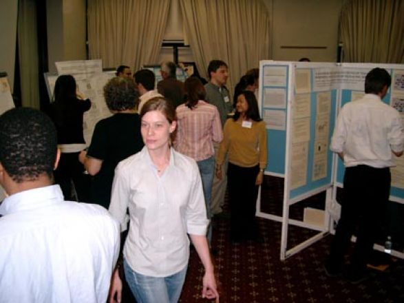Students browsing poster boards.