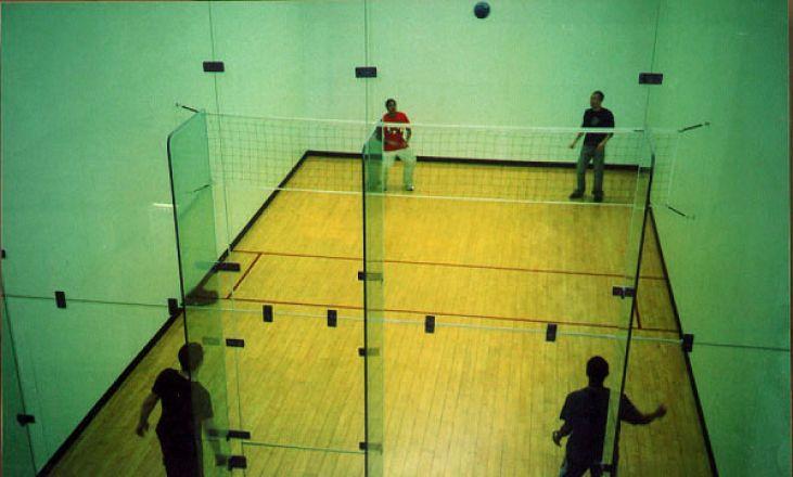 Wallyball court